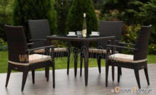Souprava ROSA (4x židle s polstry + stůl hranatý se sklem)